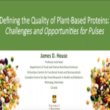 Challenges and Opportunities for Pulses