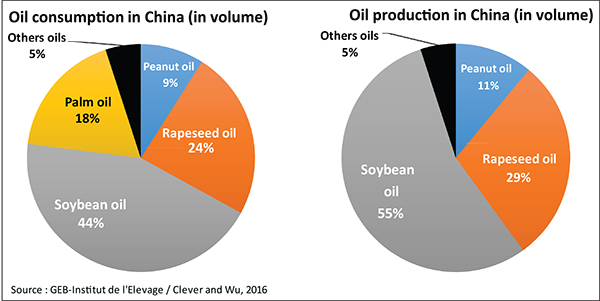 China's evolving edible oils industry