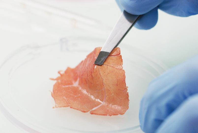 Poisson from a petri dish