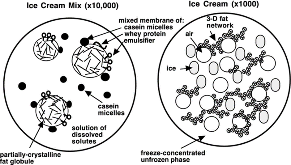 Taking The Cream Out Of Ice Cream